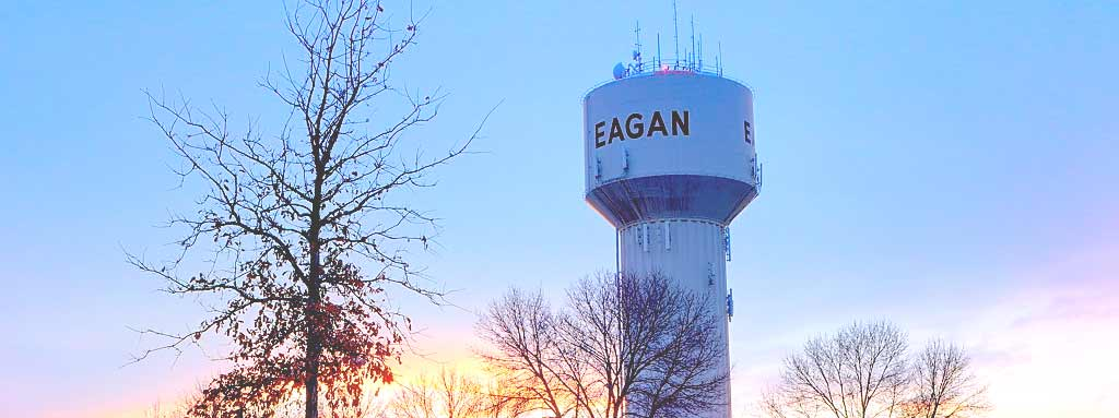 Movers Eagan, MN