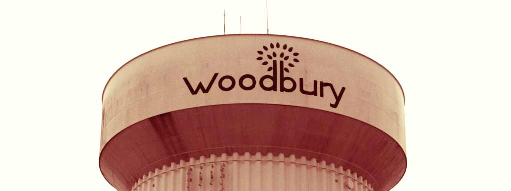 Movers Woodbury, MN